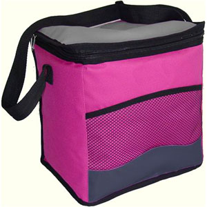Large 600D Cooler bag