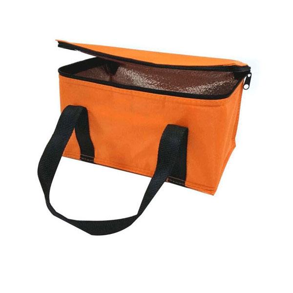 Cooler lunch bag target